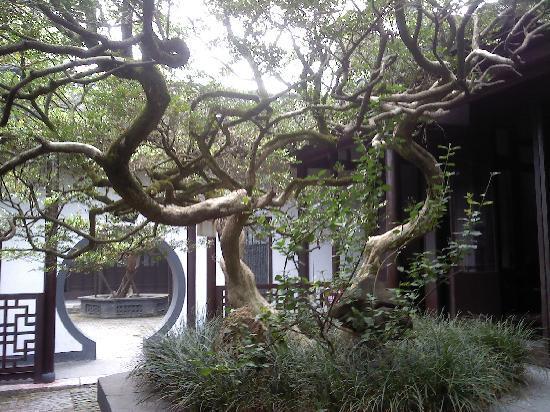 Shuihuiyuan Park: Fauna