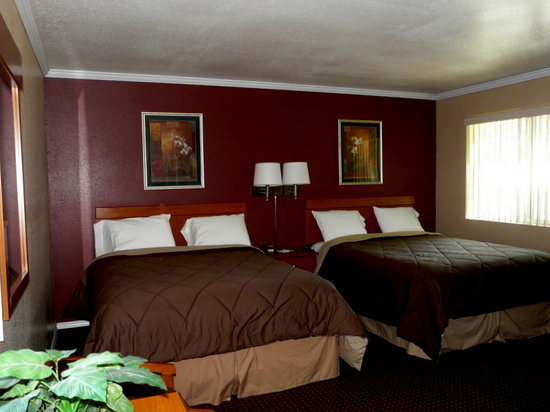 Our Room At The Maple Leaf Motel