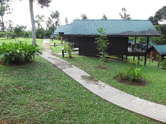 Melapi Lodge Sukau: chalets