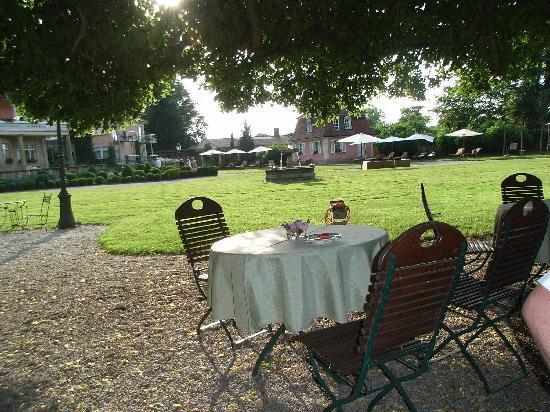 BollAnt's im Park: Schattenspender im heißen Juli
