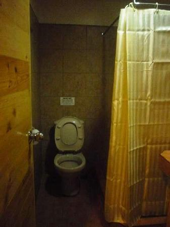 Nichols Airport Hotel: washroom