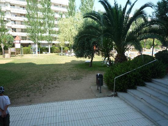 Hotel Surf-Mar: Missing grass arrownd the pool