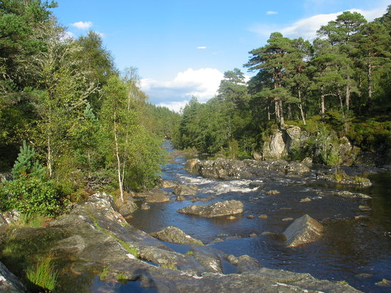 Inverness  Day Tours: Glen Affric on the Loch Ness Tour