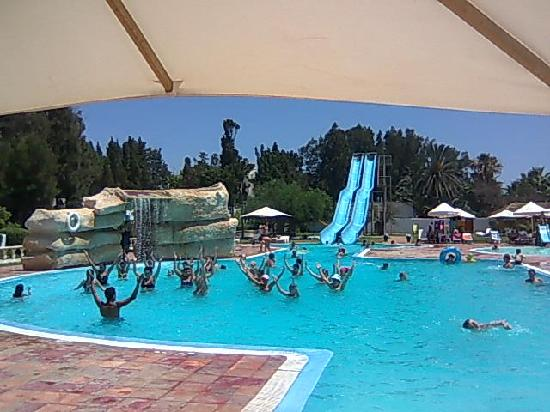 Animation en piscine photo de the club hammamet for Animation piscine