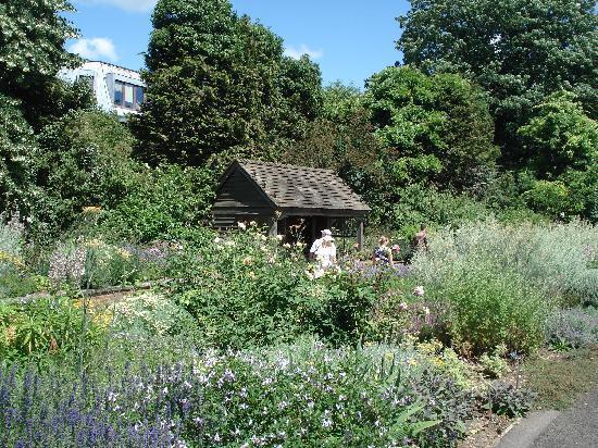 Cambridge University Botanic Garden: The Scented Garden