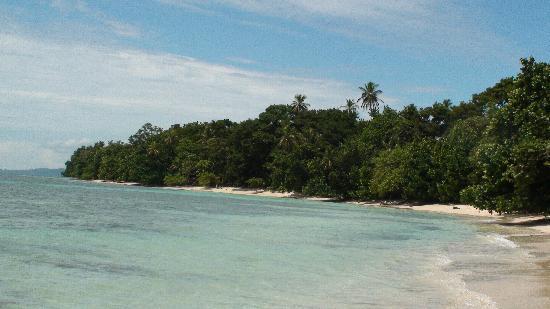 Tripadvisor Bocas Del Toro Panama: Isla Colon, Bocas Del Toro