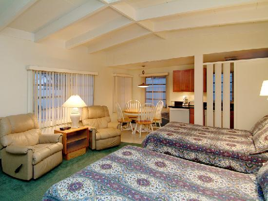 Beach Shell Inn: Large Efficiency