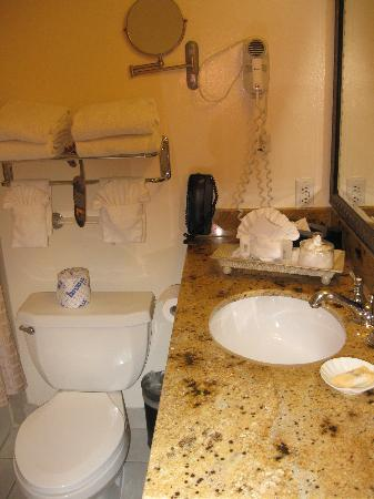 The Carlyle Inn: Toilet and sink = too close for comfort.