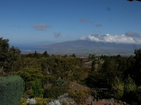The Kula Lodge: View from lodge restaurant