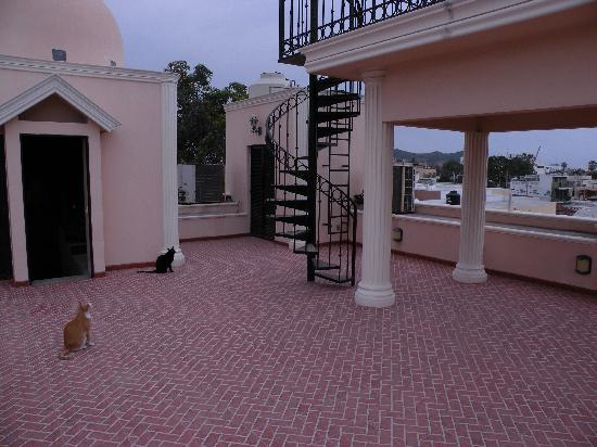 Loro de Oro Inn: Rooftop Deck