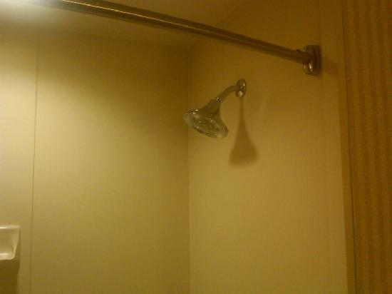 Holiday Inn Express Hotel & Suites Drums-Hazelton : Shower head with massage settings.