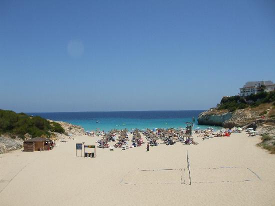 Club Hotel Tropicana Mallorca : la spiaggia