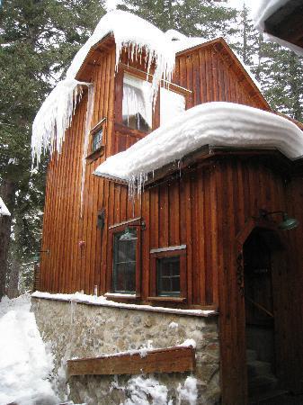 Sundance Resort: Treetop Cabin
