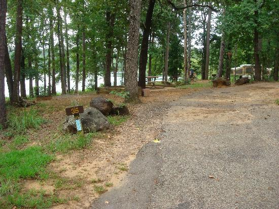 Tyler State Park: Site # 35