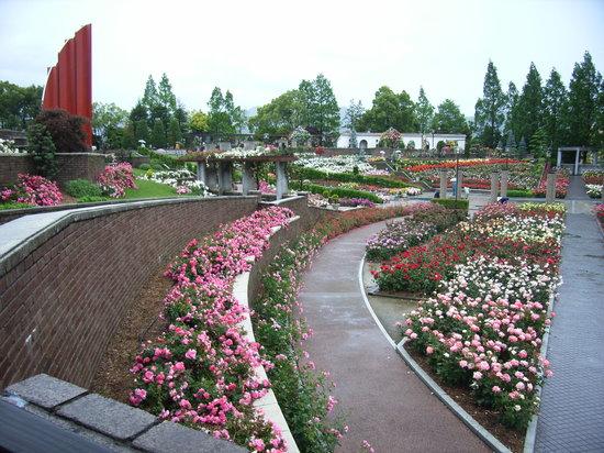 Aramaki rose garden