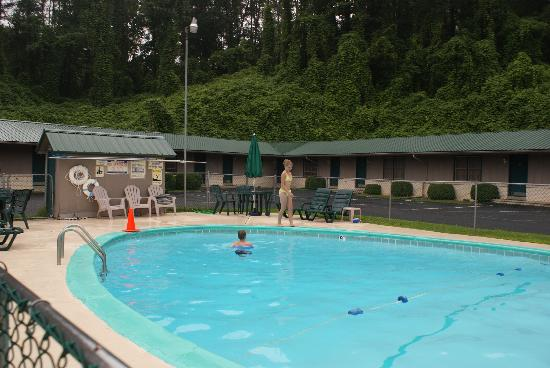 Gear Head Inn: Swimming Pool
