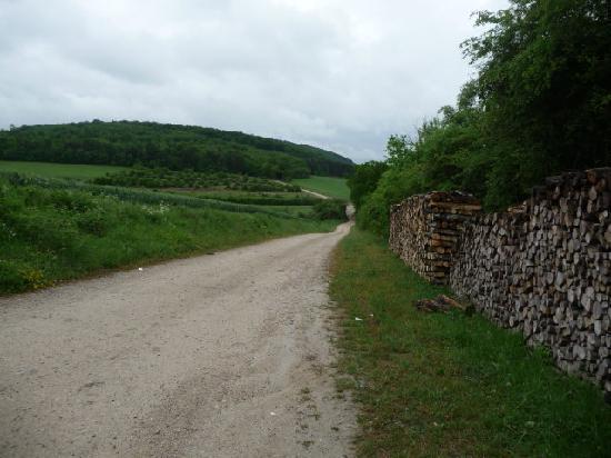 Abbaye de Clairvaux: chemin  pour y acceder