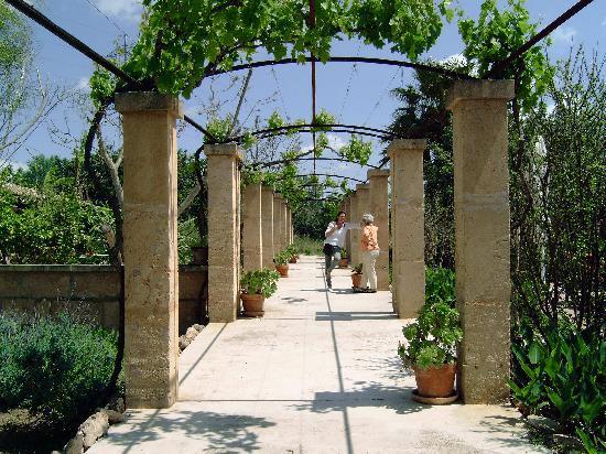 Llucmajor, Spain: Garten