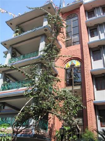 Hotel Ganesh Himal: hintern - hof