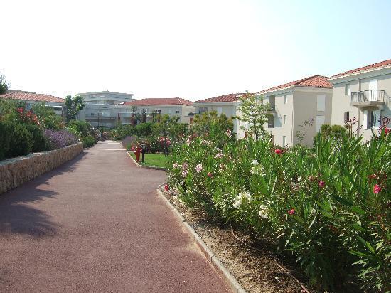 Domaine Juan Flore : gardens