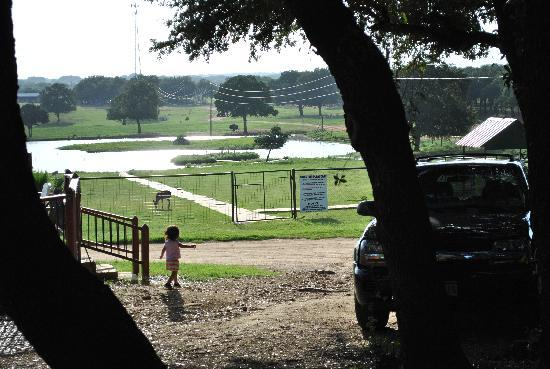 Exotic Resort Zoo : View of the playground, pond, guests-only petting zoo area