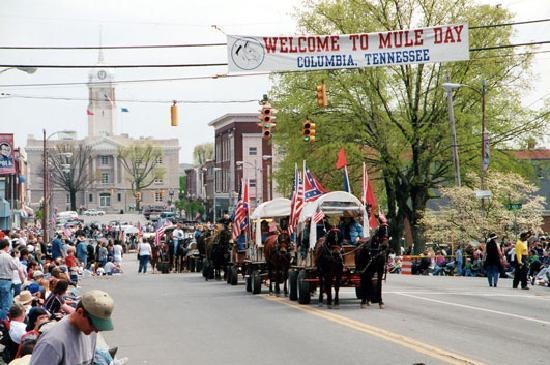 Colombia, TN: Mule Day parade in Downtown Columbia
