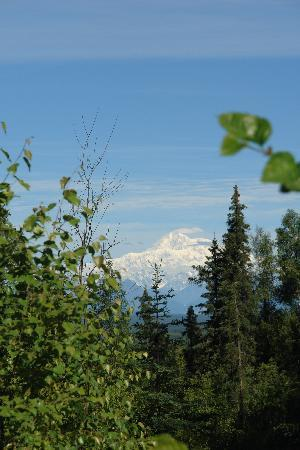 Talkeetna Treetop Chalet: view from Chalet