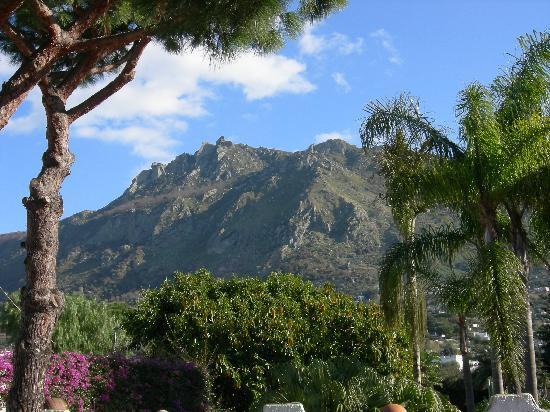 Park Hotel Terme Mediterraneo: Vista sul Monte Epomeo dal giardino