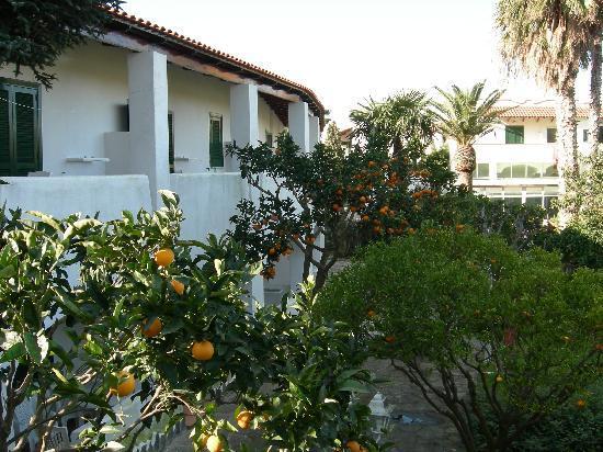 Park Hotel Terme Mediterraneo: Dependance