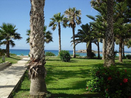 Nissi Beach Resort: Nissi Beach Gardens