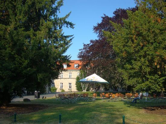 Novotel Hildesheim: Sommergarten