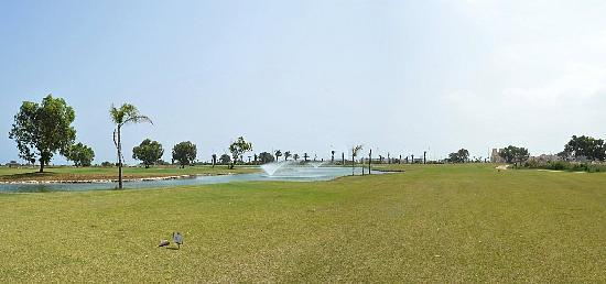 Oriental Bay Beach Golf & Spa : Golf