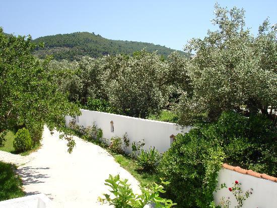 Ageri Studios: The driveway