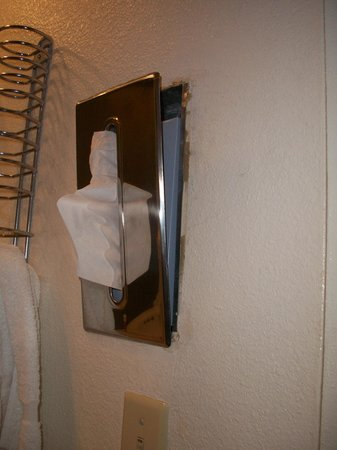 White Buffalo Hotel : Tissue container falling out of wall