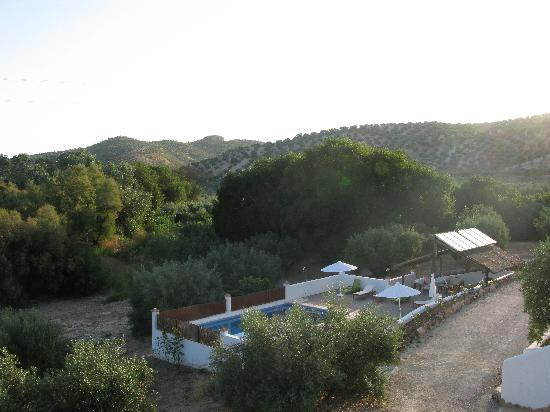 Casa Olea : Pool and pergola from my window