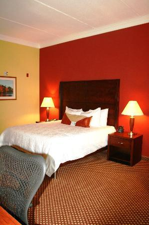 Hilton Garden Inn Houston West Katy Mills: Our King Standard Room w/ Fridge, Microwave, & Free Internet!