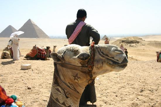 Giza, Egypt: Can anyone do tatoo removal?