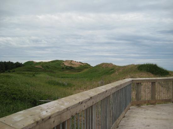 Prince Edward Island National Park Pei Sand Dunes At Brackley Beach