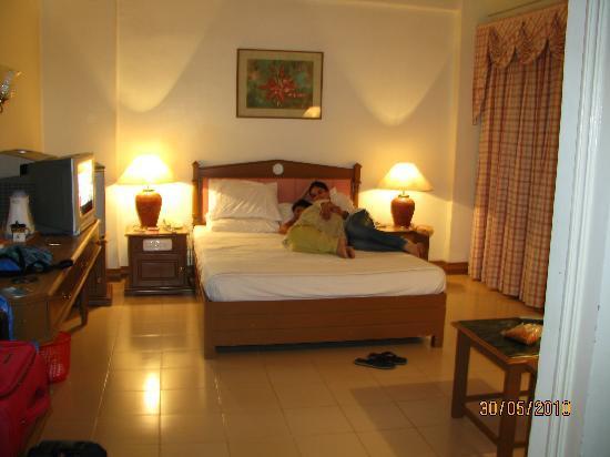 Metropolitan Serviced Villa : A Cosy Room in Cochin.