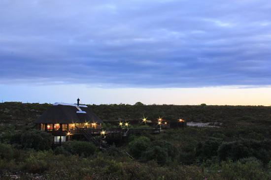 Buchu Bushcamp: Sunset