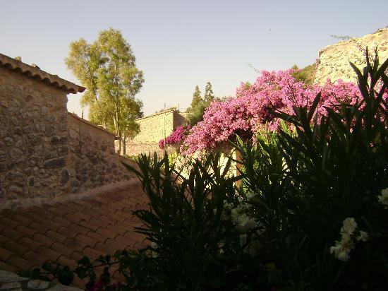 Can Furios Hotel: Susy's Bourganvillea