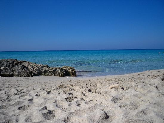 Hotel Rosamar : Playa Mitjorn