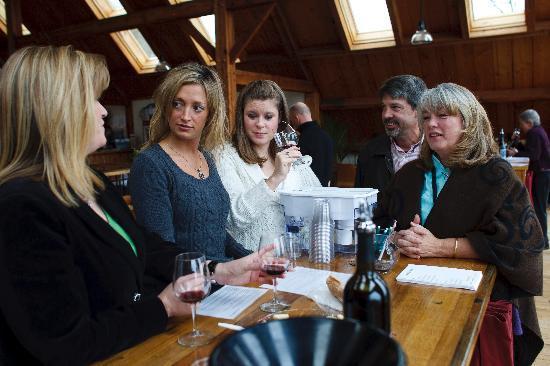 Charlottesville, VA: Arcady Wine Tours at Blenheim Vineyard