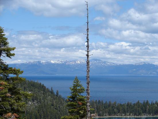 Harrah's Lake Tahoe: Beautiful