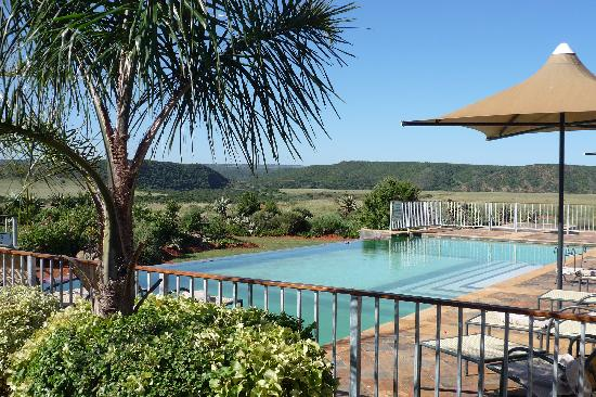 Shamwari Game Reserve Lodges: Pool mit Blick ins Shamwari Game Resort
