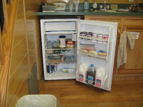 Cedar Pointu0027s Lighthouse Point: Dorm Sized Refrigerator, Small Freezer Part 88