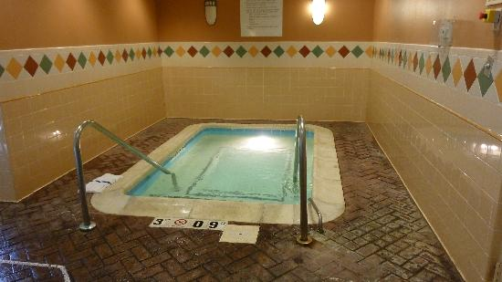 Holiday Inn Express Indianapolis Downtown City Centre: HIE hot tub