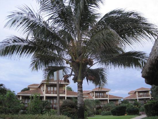 Belizean Dreams Resort: Picturesque Villas
