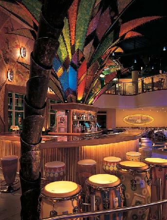 Bongos Cuban Cafe: Old Havanas tropical ambiance