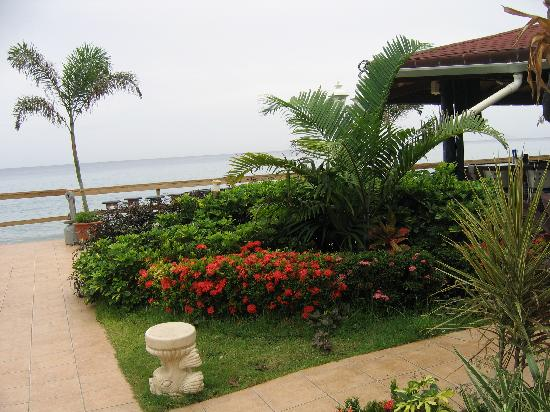 Villa Cofresi Hotel: Beautiful grounds